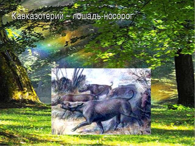Кавказотерий – лошадь-носорог