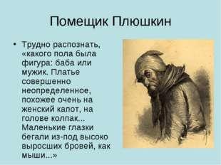 Помещик Плюшкин Трудно распознать, «какого пола была фигура: баба или мужик.