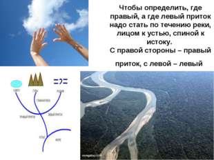 Чтобы определить, где правый, а где левый приток надо стать по течению реки,