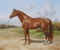 Лошадь - Кони - Прочее конного рынка - Продаю 3 картины с лошадьми! . (Не дорого)