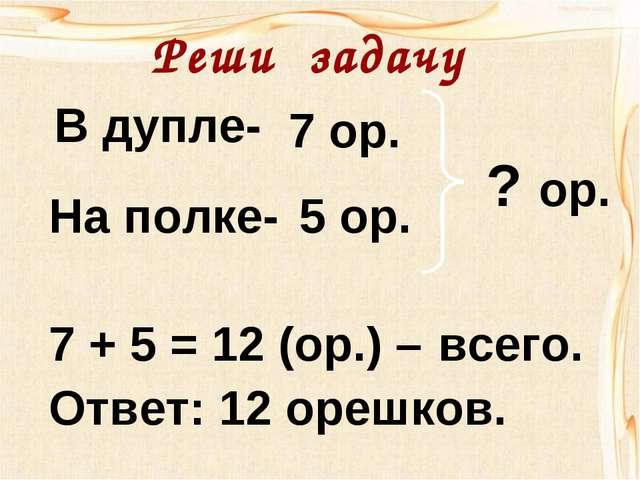 В дупле- На полке- 7 ор. 5 ор. ? ор. 7 + 5 = 12 (ор.) – Ответ: 12 орешков. вс...