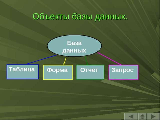Объекты базы данных. База данных Таблица Отчет Запрос Форма