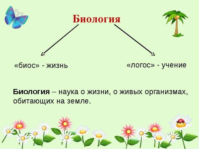 Биология «биос» - жизнь «логос» - учение Биология – наука о жизни, о живых ор...