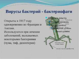 Вирусы бактерий - бактериофаги Открыты в 1917 году одновременно во Франции и