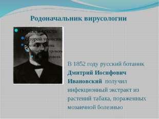 Родоначальник вирусологии В 1852 году русский ботаник Дмитрий Иосифович Ивано