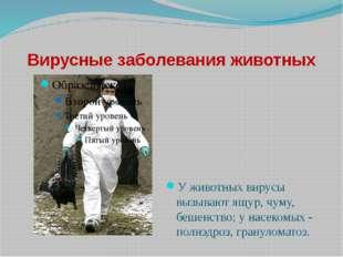 Вирусные заболевания животных У животных вирусы вызывают ящур, чуму, бешенств