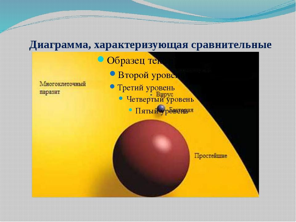 Диаграмма, характеризующая сравнительные размеры микроорганизмов