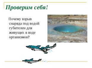 Проверим себя! Почему взрыв снаряда под водой губителен для живущих в воде ор