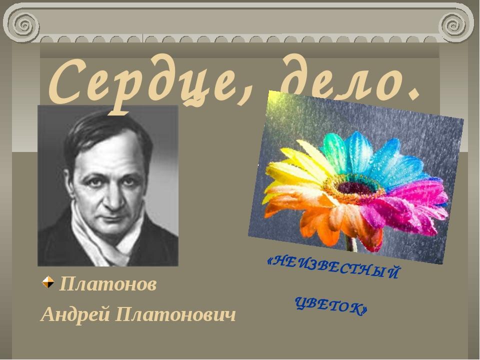 Сердце, дело. Платонов Андрей Платонович «НЕИЗВЕСТНЫЙ ЦВЕТОК»