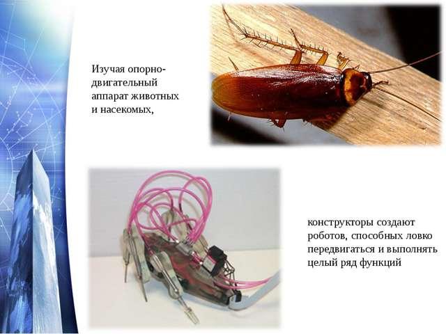 Изучая опорно-двигательный аппарат животных и насекомых, конструкторы создают...