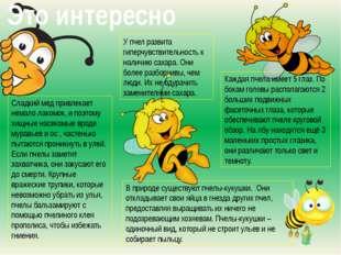 Сладкий мед привлекает немало лакомок, и поэтому хищные насекомые вроде мурав
