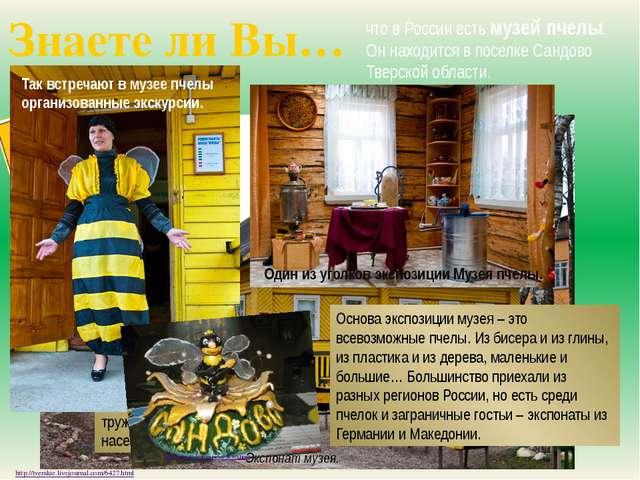 Знаете ли Вы… что в России есть музей пчелы. Он находится в поселке Сандово Т...