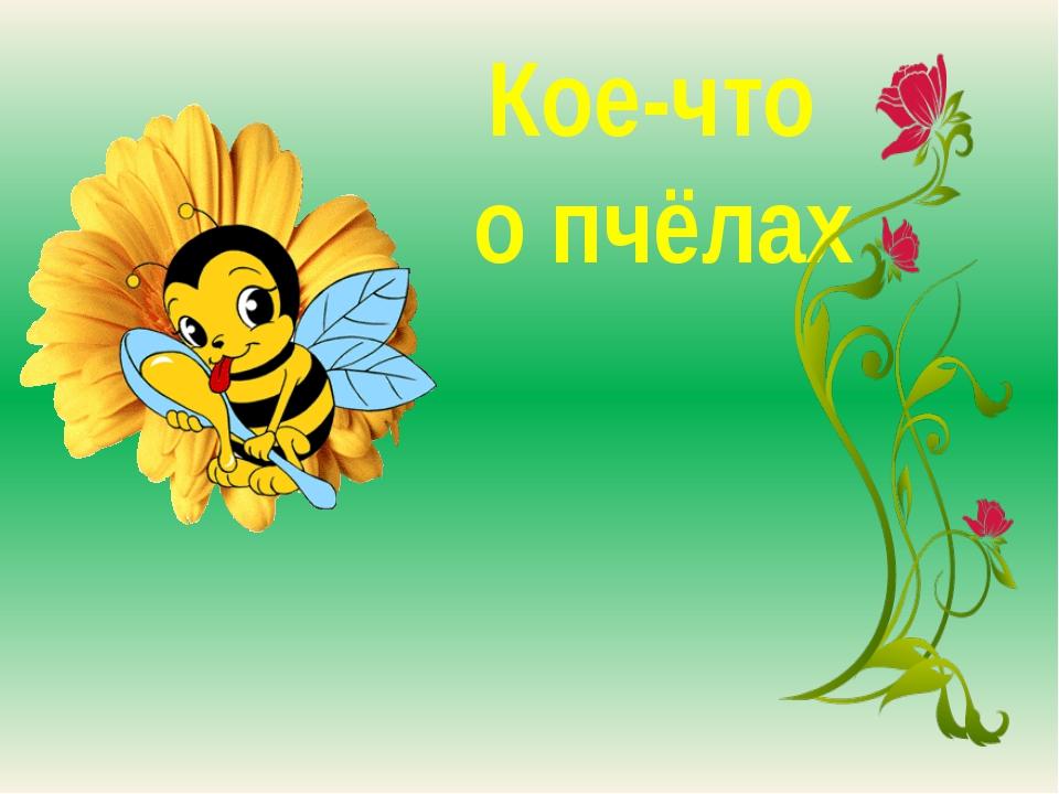 Кое-что о пчёлах