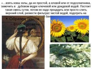 «…взять ковш золы, да не простой, а еловой или от подсолнечника, замочить в д