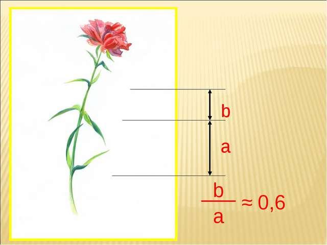 a b b a ≈ 0,6