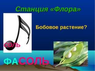 СОЛЬ Станция «Флора» ФАСОЛЬ Бобовое растение?