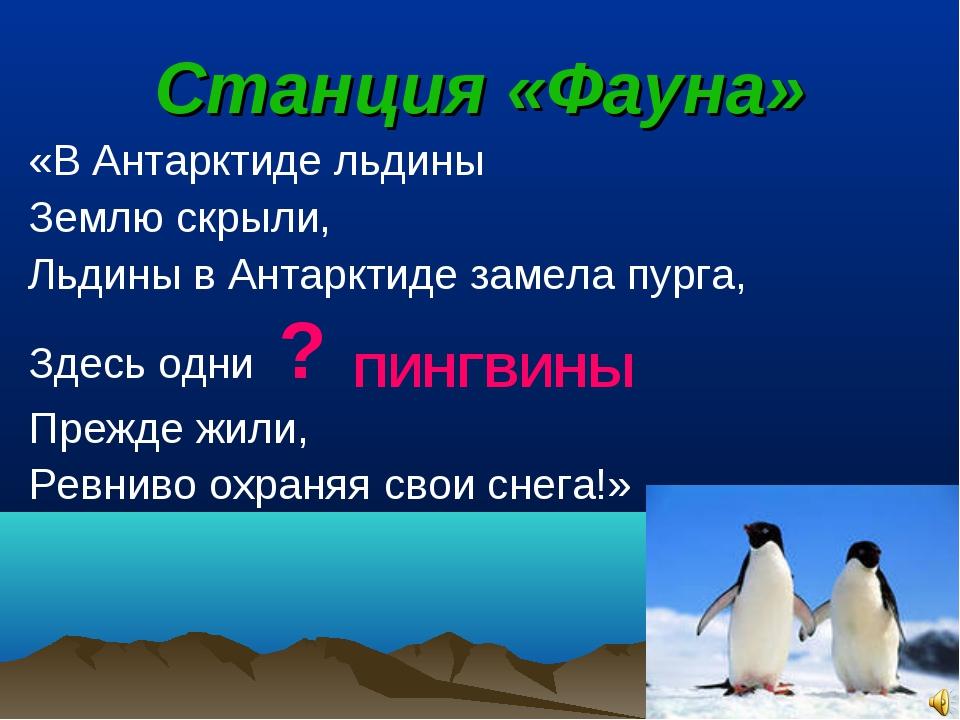 Станция «Фауна» «В Антарктиде льдины Землю скрыли, Льдины в Антарктиде замела...