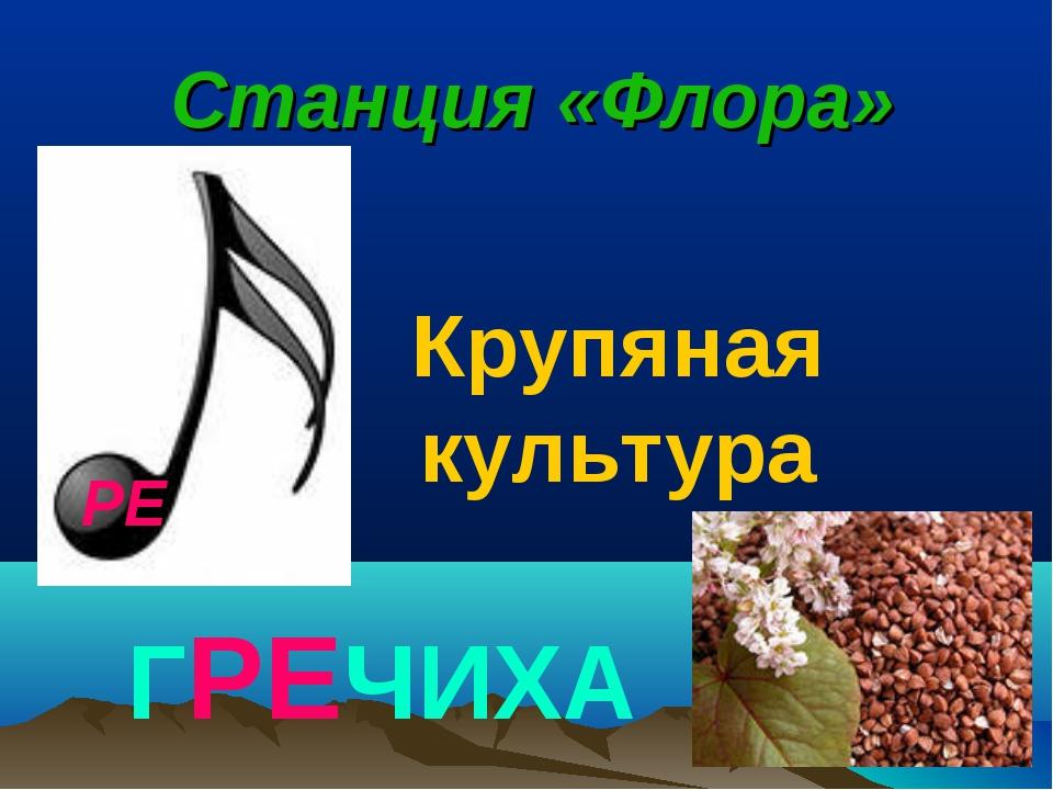РЕ Станция «Флора» ГРЕЧИХА Крупяная культура