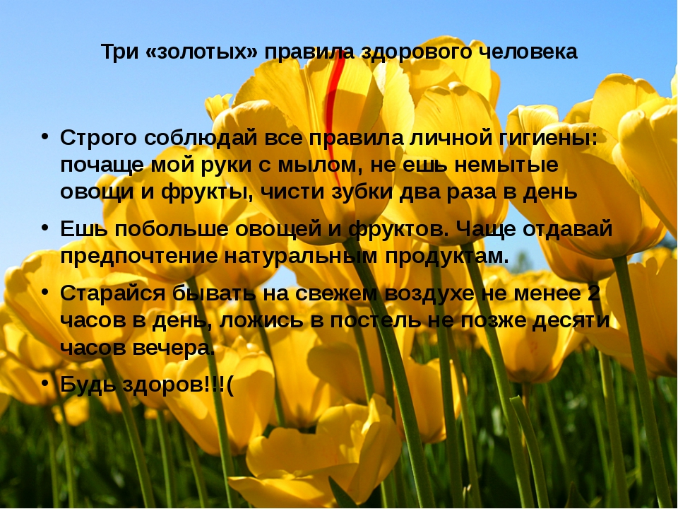 Три «золотых» правила здорового человека Строго соблюдай все правила личной г...