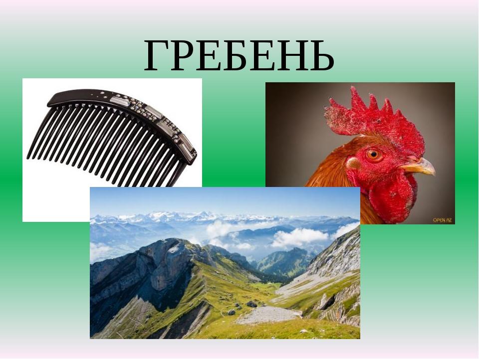 ГРЕБЕНЬ