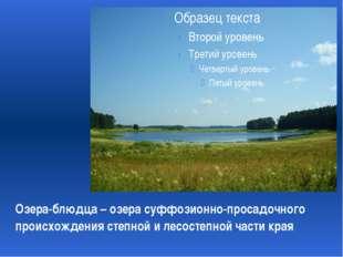 Озера-блюдца – озера суффозионно-просадочного происхождения степной и лесост