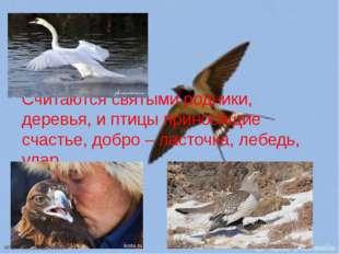 Считаются святыми родники, деревья, и птицы приносящие счастье, добро – ласто