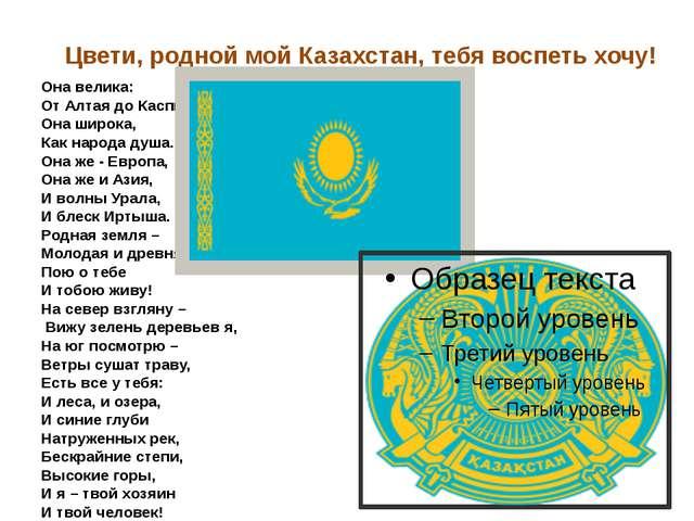 Цвети, родной мой Казахстан, тебя воспеть хочу!