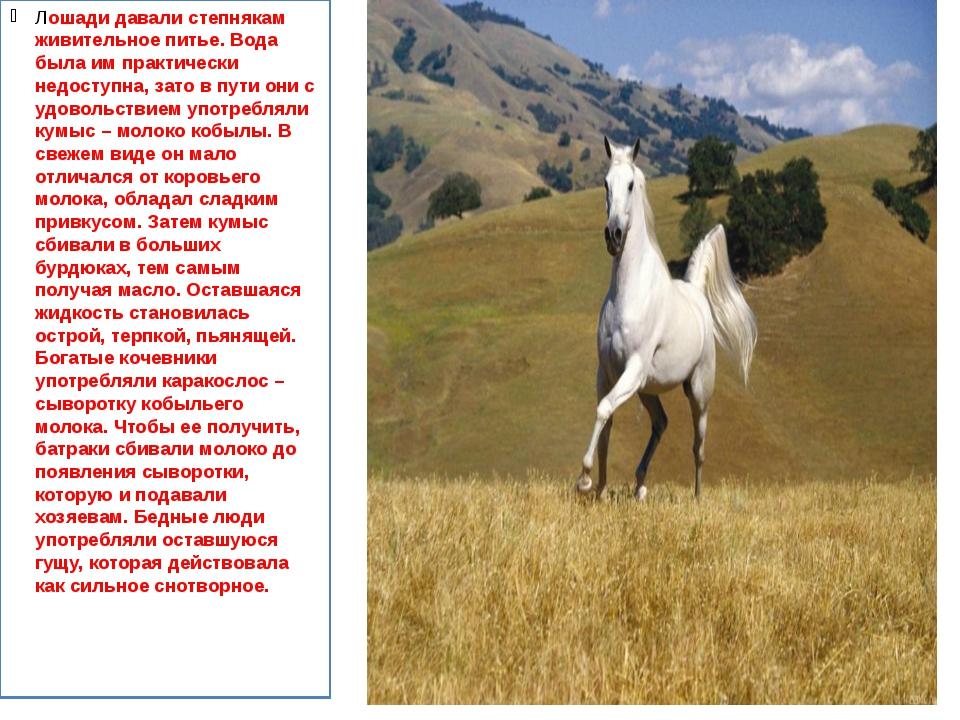 Лошади давали степнякам живительное питье. Вода была им практически недоступн...
