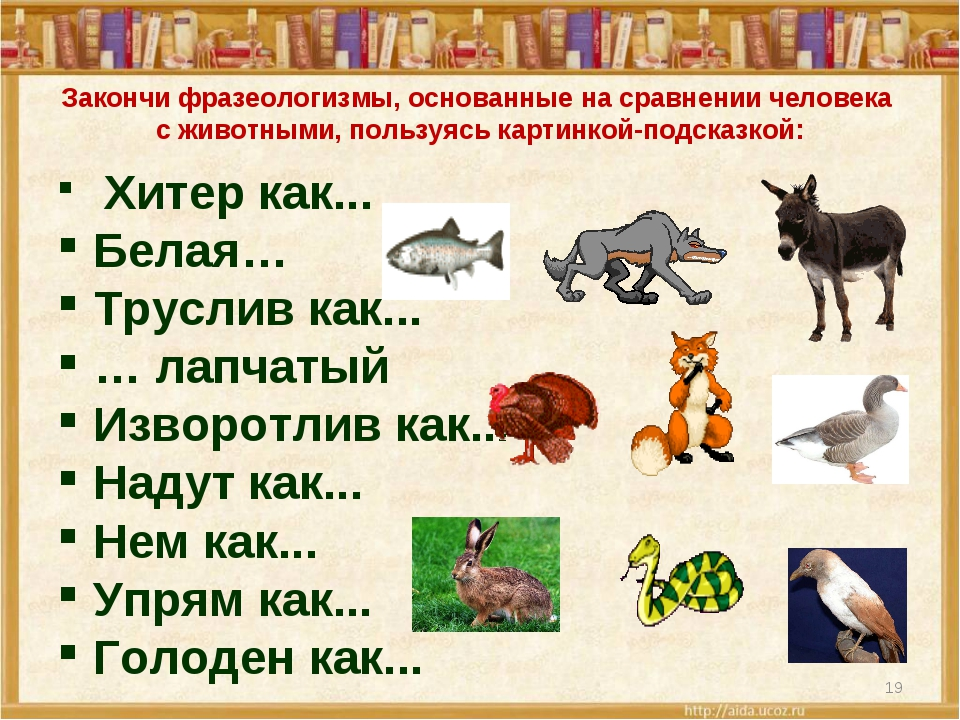 Фразеологизмы греческого языка черты характера