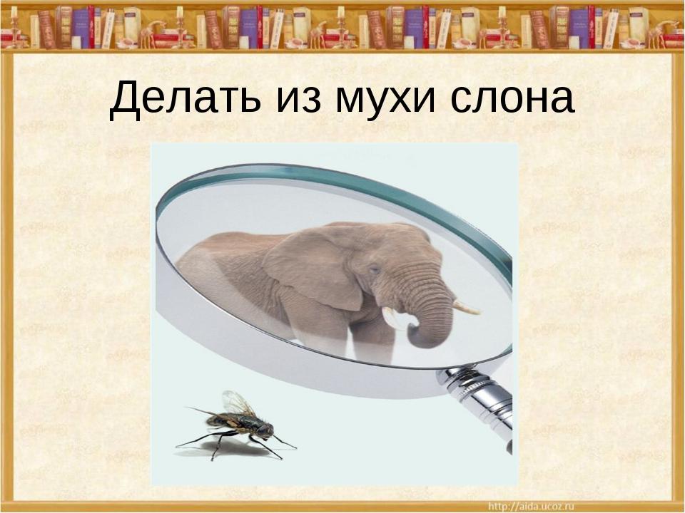 Как из мухи сделать слона картинка