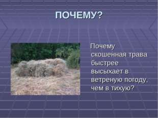 ПОЧЕМУ? Почему скошенная трава быстрее высыхает в ветреную погоду, чем в тихую?