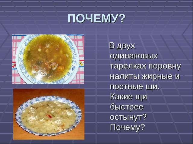 ПОЧЕМУ? В двух одинаковых тарелках поровну налиты жирные и постные щи. Какие...