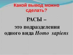 Какой вывод можно сделать? РАСЫ – это подразделения одного вида Homo sapiens
