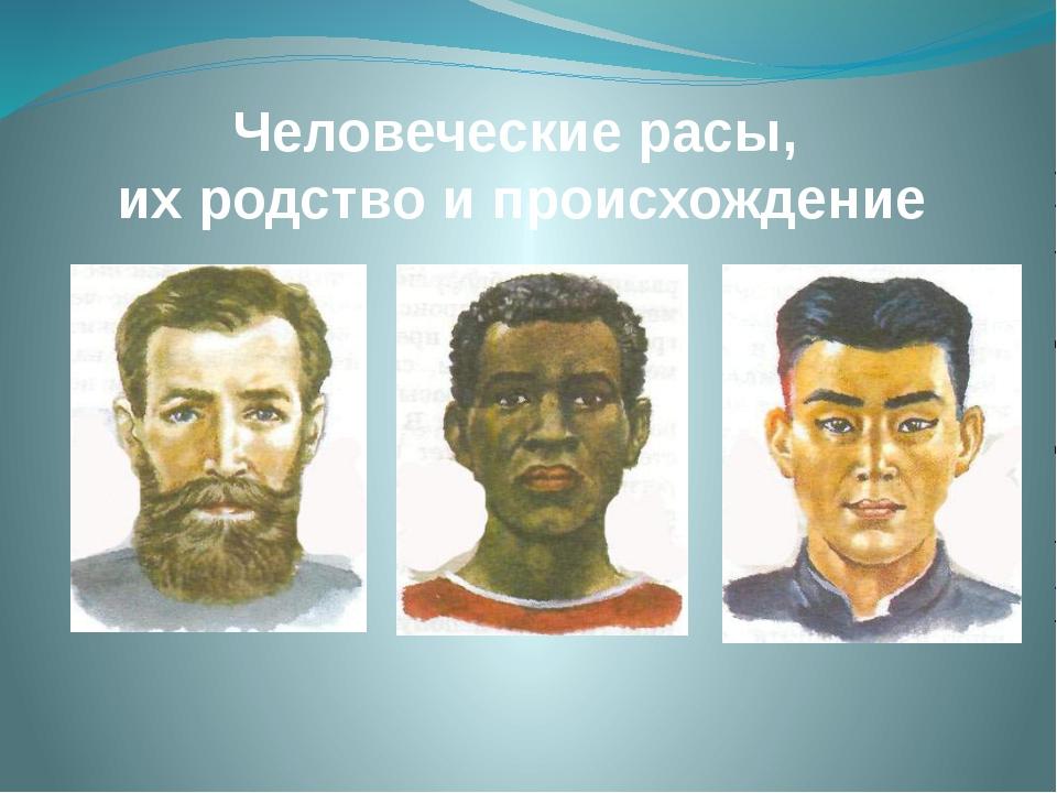 Человеческие расы, их родство и происхождение