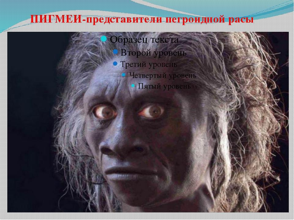 ПИГМЕИ-представители негроидной расы