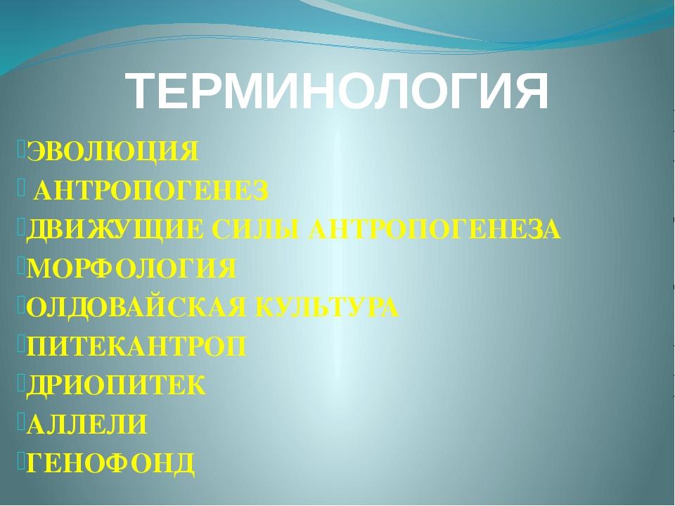 ТЕРМИНОЛОГИЯ ЭВОЛЮЦИЯ АНТРОПОГЕНЕЗ ДВИЖУЩИЕ СИЛЫ АНТРОПОГЕНЕЗА МОРФОЛОГИЯ ОЛД...