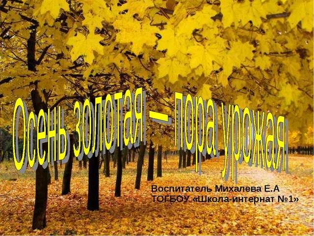 Воспитатель Михалева Е.А ТОГБОУ «Школа-интернат №1»