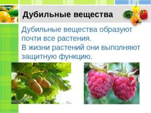 Дубильные вещества Дубильные вещества образуют почти все растения. В жизни ра