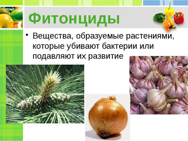 Фитонциды Вещества, образуемые растениями, которые убивают бактерии или подав...