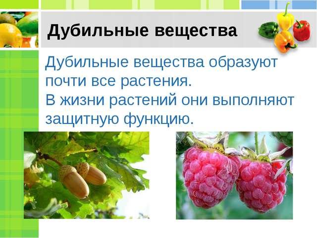 Дубильные вещества Дубильные вещества образуют почти все растения. В жизни ра...