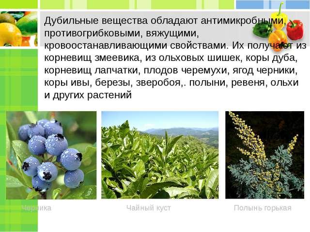 Вяжущие вещества в растениях
