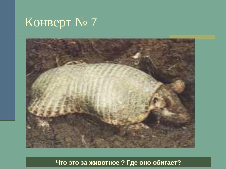 Конверт № 7 Что это за животное ? Где оно обитает?