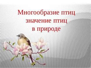 Многообразие птиц значение птиц в природе