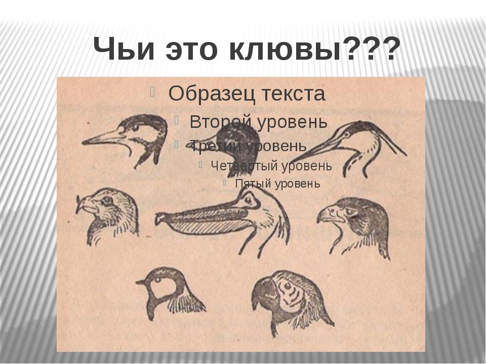 Чьи это клювы???