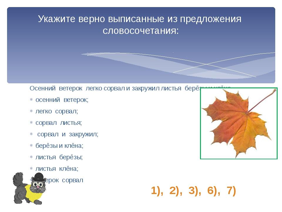 Осенний ветерок легко сорвал и закружил листья берёзы и клёна. осенний ветеро...