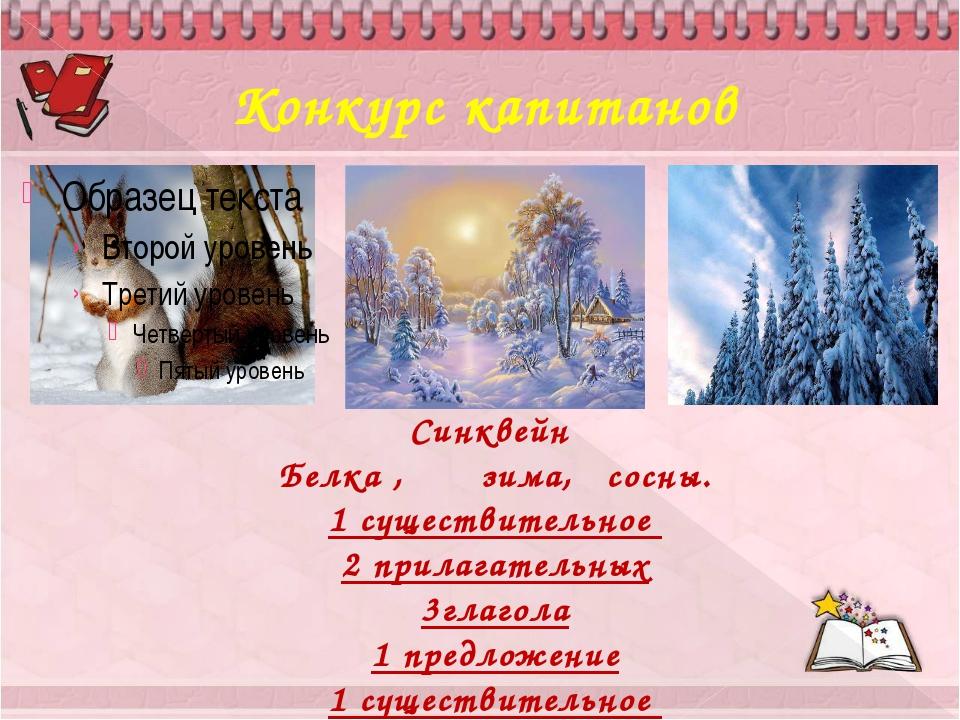 Конкурс капитанов Синквейн Белка , зима, сосны. 1 существительное 2 прилагате...