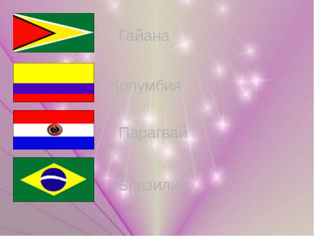 Гайана Колумбия Парагвай Бразилия