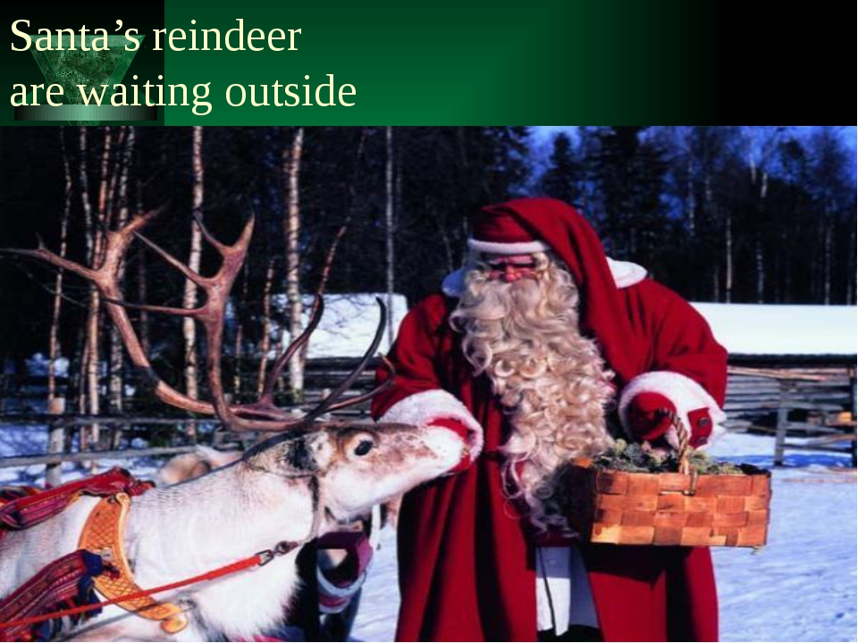 Santa's reindeer are waiting outside