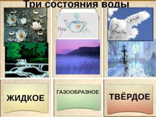 Три состояния воды ЖИДКОЕ ТВЁРДОЕ ГАЗООБРАЗНОЕ