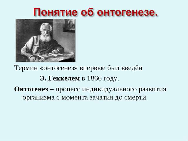 Термин «онтогенез» впервые был введён Э. Геккелем в 1866 году. Онтогенез – п...